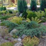 Как сделать ландшафт на садовом участке