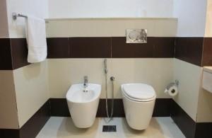 Как оборудовать псевдобиде в туалете